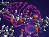 Nya forskningsresultat utmanar gammal sanning om Alzheimerssjukdom